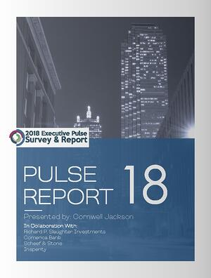 Cover - 2018 Executive Pulse Report